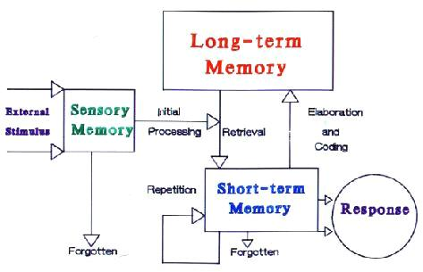 human memory diagram information processing theory - is theory